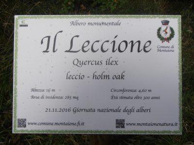 La targa in memoria della Giornata Nazionale degli Alberi